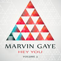 Marvin Gaye – Hey You Vol. 3