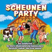 Různí interpreti – Scheunenparty