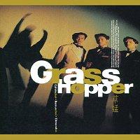 Přední strana obalu CD BTB - Grasshopper IV