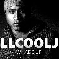 LL Cool J, Chuck D, Travis Barker, Tom Morello, DJ Z-Trip – Whaddup