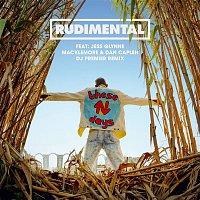 Rudimental, Jess Glynne, Macklemore, Dan Caplen – These Days (feat. Jess Glynne, Macklemore & Dan Caplen) [DJ Premier Remix]