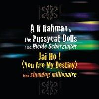 A. R. Rahman, The Pussycat Dolls, Nicole Scherzinger – Jai Ho! (You Are My Destiny) [International Version]