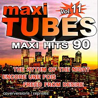 Maxi Tubes - Vol. 11 / The best Maxi Hits of the 90's