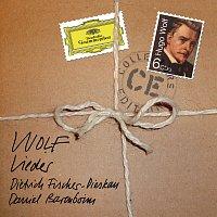 Přední strana obalu CD Wolf: Lieder