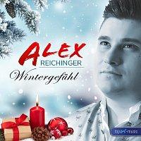 Alex Reichinger – Wintergefühl