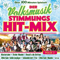 Různí interpreti – Der Volksmusik Stimmungs Hit-Mix - Folge 2