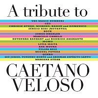 Přední strana obalu CD A Tribute To Caetano Veloso