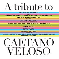 Různí interpreti – A Tribute To Caetano Veloso