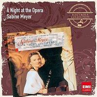Sabine Meyer, Orchester der Oper Zurich, Franz Welser-Most – A Night at the Opera