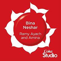 Přední strana obalu CD Bina Neshar