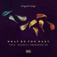 Miguel Migs, Meshell Ndegeocello – What Do You Want