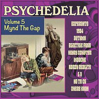 Různí interpreti – Psychedelia, Volume Five: Mynd The Gap