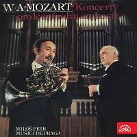 Miloš Petr, Musici de Praga, Libor Hlaváček – Koncerty pro lesní roh a orchestr