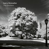 Larry Grenadier – The Gleaners