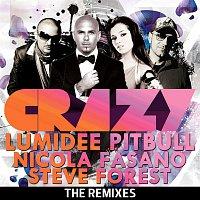 Pitbull featuring Lumidee – Crazy - The Remixes