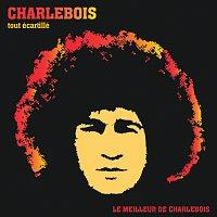 Robert Charlebois – Tout Ecartillé