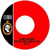 Různí interpreti – Cameo Parkway Pop And Soul Gems Of 1966 Vol. 6