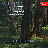 Foerstrovo trio – Fantazijní skladby, Klavírní trio