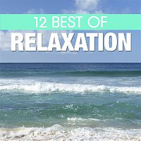 Various Artists.. – 12 Best of Relaxation