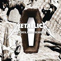 Přední strana obalu CD Broken, Beat & Scarred [DIGI Pack]