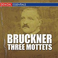 Anton Bruckner, Hans Gillesberger, Wiener Kammerorchester – Bruckner - Three Mottets