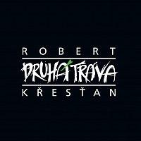 Přední strana obalu CD Robert Křesťan a Druhá tráva