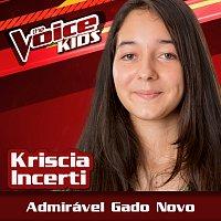Kriscia Incerti – Admirável Gado Novo [Ao Vivo / The Voice Brasil Kids 2017]