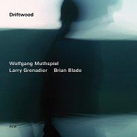 Wolfgang Muthspiel, Larry Grenadier, Brian Blade – Driftwood