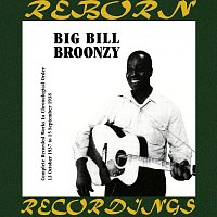 Big Bill Broonzy – Complete Recorded Works, Vol. 7 (1937-1938) (HD Remastered)