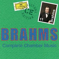 Různí interpreti – Brahms: Complete Chamber Music