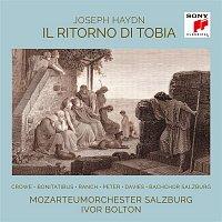 Ivor Bolton – Il ritorno di Tobia, Hob. XXI:1/Part II/No. 10b, Come se a voi parlasse (Aria)
