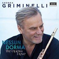 Andrea Griminelli – Nessun Dorma