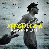 Marcus Miller – Afrodeezia
