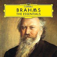 Různí interpreti – Brahms: The Essentials