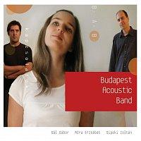 Budapest Acoustic Band – Kapcsolatok