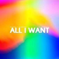 Secondcity x Paul Woolford, Andrea Martin – All I Want
