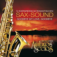 Orchester Ambros Seelos – Goodbye My Love, Goodbye