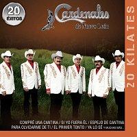 Cardenales De Nuevo León – 20 Kilates 20 Éxitos