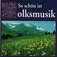 Various  Artists – So schon ist Volksmusik