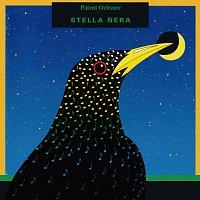 Patent Ochsner – Stella Nera