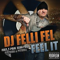 DJ Felli Fel, T-Pain, Sean Paul, Flo Rida, Pitbull – Feel It
