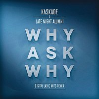 Kaskade, Late Night Alumni – Why Ask Why