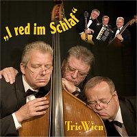 Trio Wien – I red im Schlaf