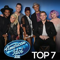 Různí interpreti – American Idol Top 7 Season 14