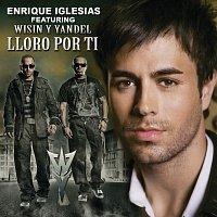 Přední strana obalu CD Lloro Por Ti - Remix