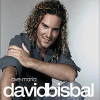 Přední strana obalu CD Ave Maria [2007 Version]