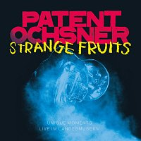 Patent Ochsner – Strange Fruits - Unique Moments live im Landesmuseum