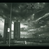 Paul Bley, Gary Peacock, Paul Motian – Not Two, Not One