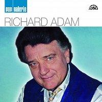 Richard Adam – Pop galerie