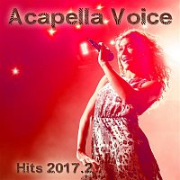 Avidance, Samir – Acapella Voice Hits 2017.2